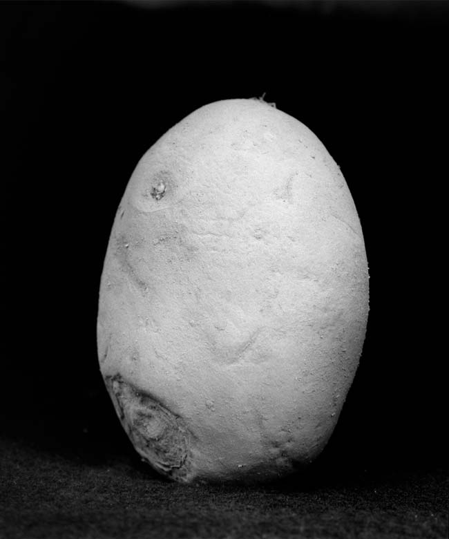 potatography